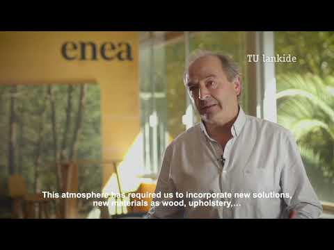 Enea and its integral solutions
